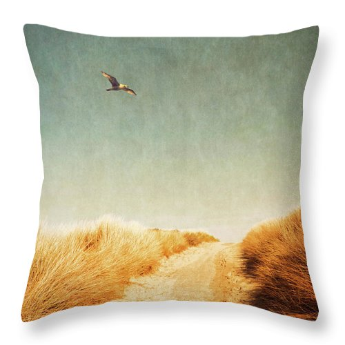 Beach Throw Pillow featuring the photograph To The Beach by Wim Lanclus