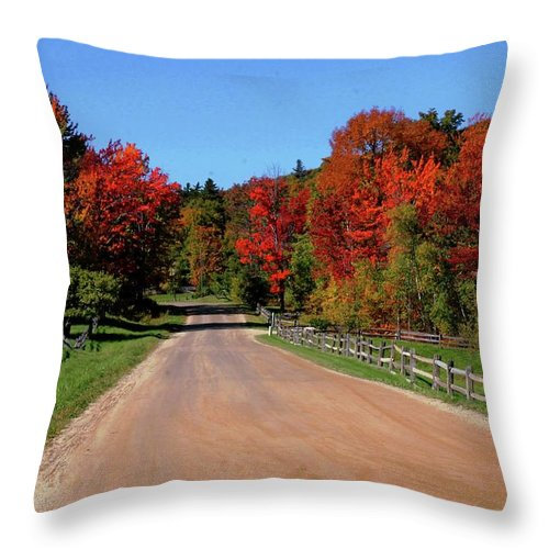 Colors Throw Pillow featuring the photograph To Where Does The Road Lead by Laurie Baird