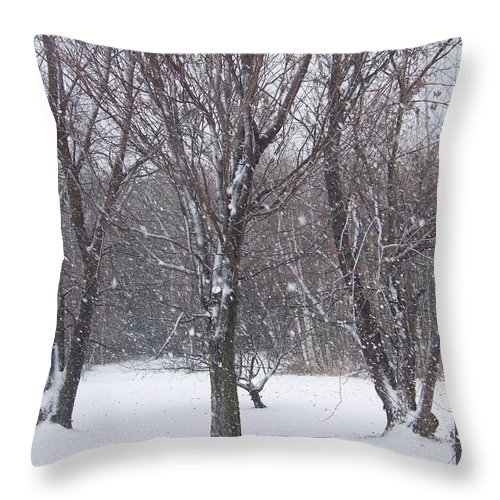 Snow Throw Pillow featuring the photograph Today - November 25 - Photograph by Jackie Mueller-Jones