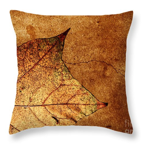 Autumn Throw Pillow featuring the photograph Today Everything Changes by Dana DiPasquale