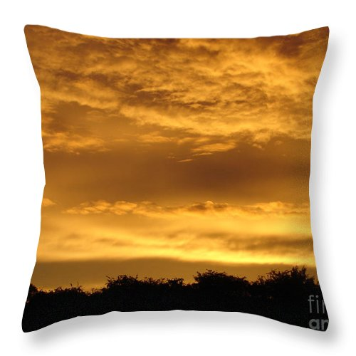 Sunset Throw Pillow featuring the photograph Toffee Sunset 3 by Carol Lynch