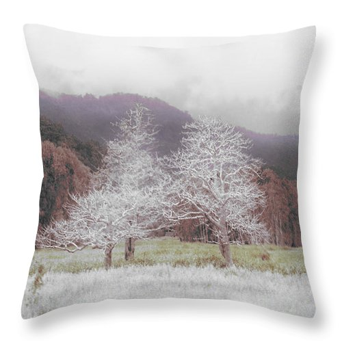 Landscape Throw Pillow featuring the photograph Together We Stand by Holly Kempe
