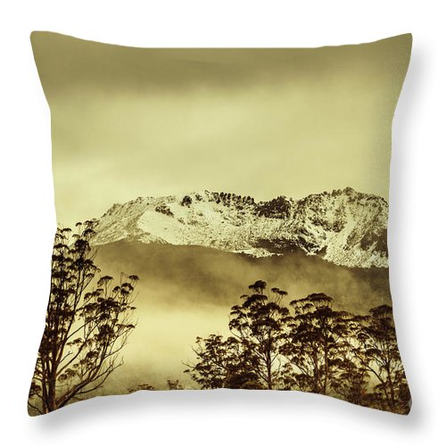 Vintage Throw Pillow featuring the photograph Toned View Of A Snowy Mount Gell, Tasmania by Jorgo Photography - Wall Art Gallery