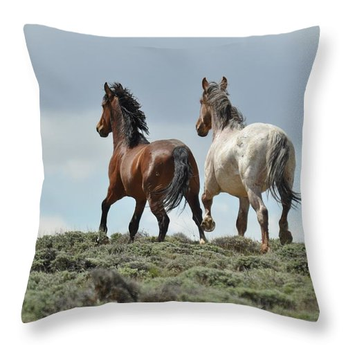 Wild Horses Throw Pillow featuring the photograph Too Beautiful by Frank Madia