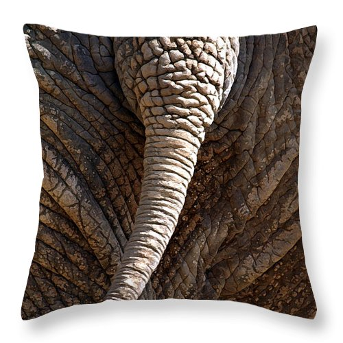 Elephant Throw Pillow featuring the photograph Too Close For Comfort by Mary Haber