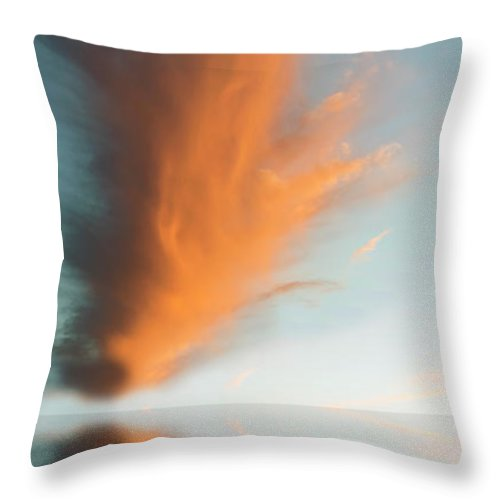 Original Art Throw Pillow featuring the photograph Torch Of Freedom by Jerry McElroy