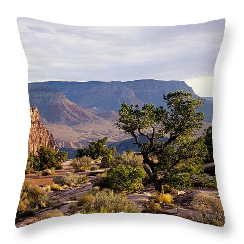 Arizona Throw Pillow featuring the photograph Toroweap by Kathy McClure
