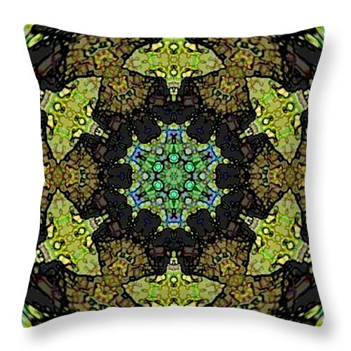 Fractal Image Throw Pillow featuring the photograph Tortuga by Amber Stubbs