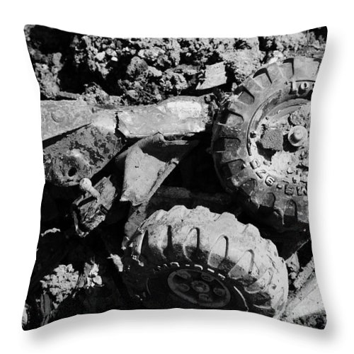 Toy Throw Pillow featuring the photograph Tossed Toy by Angus Hooper Iii