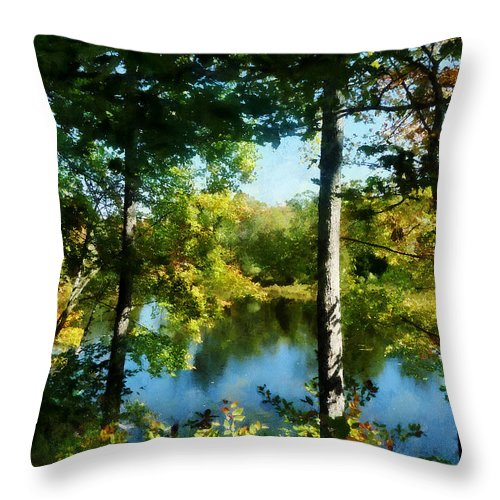 Autumn Throw Pillow featuring the photograph Touch Of Autumn by Susan Savad