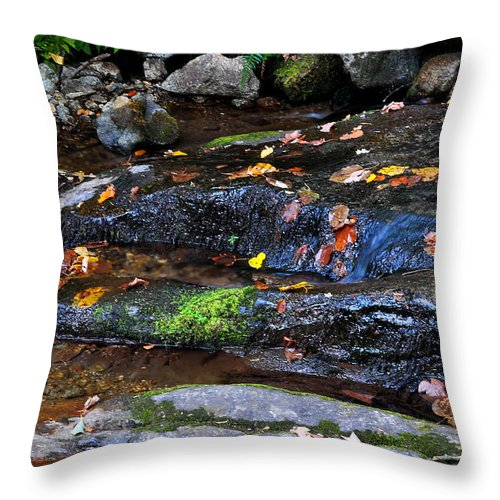 Water Throw Pillow featuring the photograph Touch Of Fall by Todd Hostetter