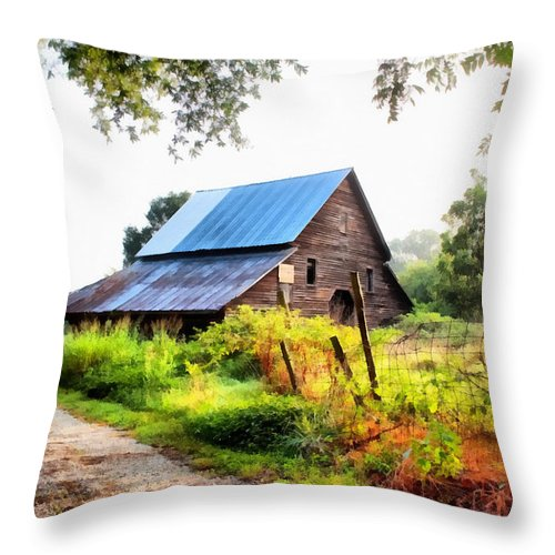 Landscape Throw Pillow featuring the painting Townville Barn by Lynne Jenkins