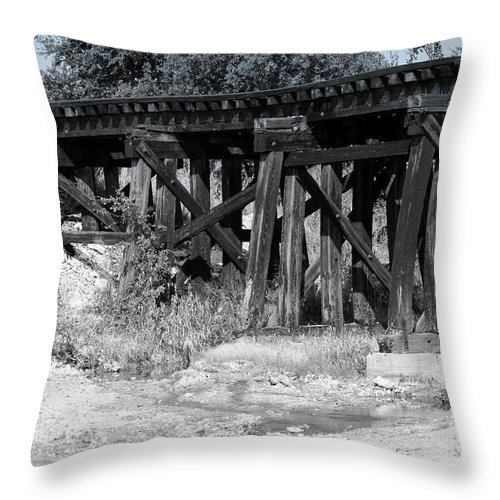 Rail Throw Pillow featuring the photograph Trackin' The Past by Elizabeth Hart