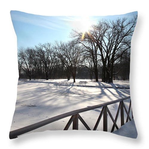 Winter Throw Pillow featuring the photograph Tracking A Cayote by Joseph G Holland