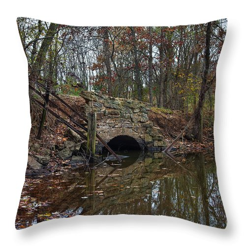 2013 Throw Pillow featuring the photograph Trail Bridge by Larry Braun