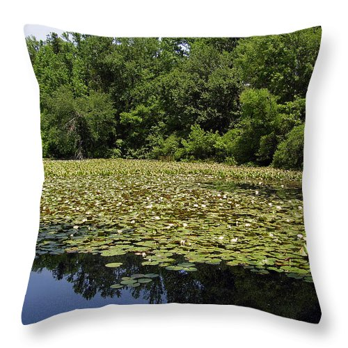 Tranquility Throw Pillow featuring the photograph Tranquility by Flavia Westerwelle