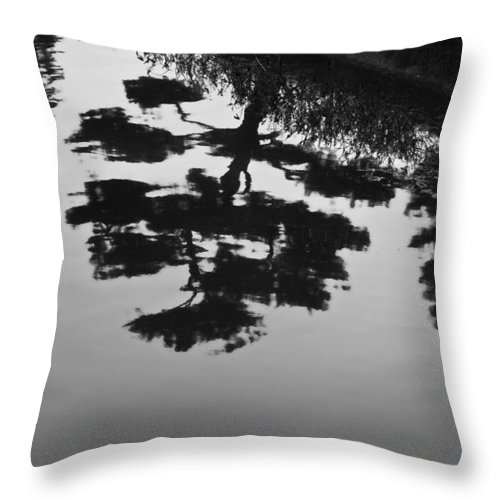 Tranquility Throw Pillow featuring the photograph Tranquility II by John Hansen