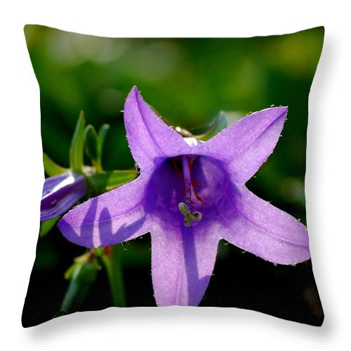 Digital Photography Throw Pillow featuring the digital art Translucent by David Lane