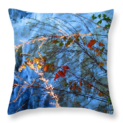 Water Throw Pillow featuring the photograph Life Currents by Sybil Staples