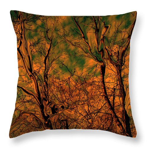 Trees Throw Pillow featuring the photograph Tree abstract by Linda Sannuti