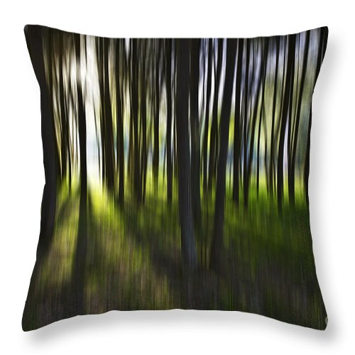 Trees Abstract Tree Lines Forest Wood Throw Pillow featuring the photograph Tree Abstract by Sheila Smart Fine Art Photography