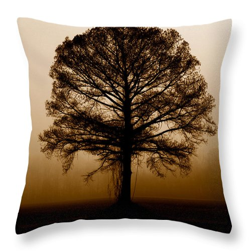 Trees Throw Pillow featuring the photograph Tree by Amanda Barcon