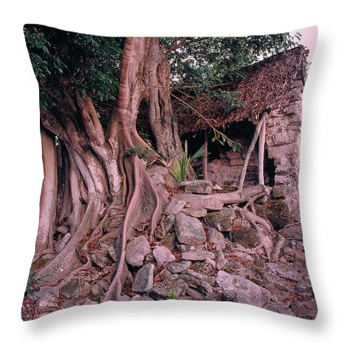 Tree Throw Pillow featuring the photograph Tree And Ruins In Cozumel by Thomas Firak