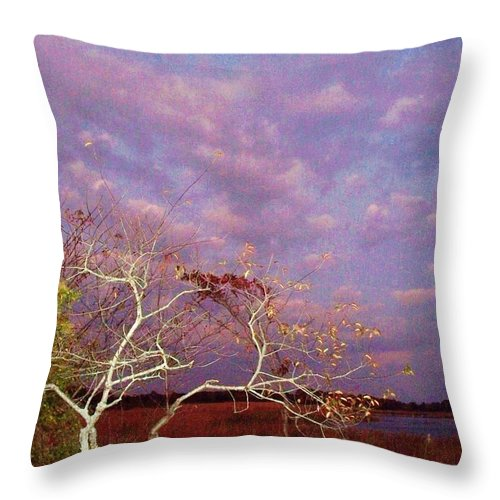 Trees Throw Pillow featuring the painting Tree And Sky At Cape May Point State Park Nj by Eric Schiabor