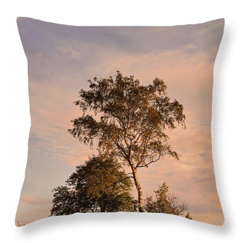 Tree Throw Pillow featuring the photograph Tree At Dusk On Suomenlinna Island by Greg Matchick