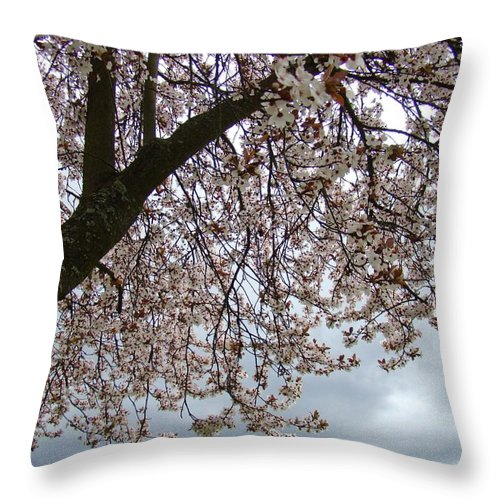 �blossoms Artwork� Throw Pillow featuring the photograph Tree Blossoms Landscape 11 Spring Blossoms Art Prints Giclee Sky Storm Clouds by Baslee Troutman