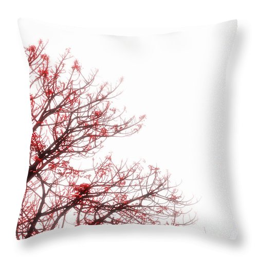 Tree Throw Pillow featuring the photograph Tree Branches by Charuhas Images