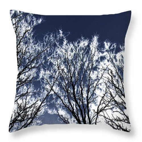 Scenic Throw Pillow featuring the photograph Tree Fantasy 2 by Lee Santa