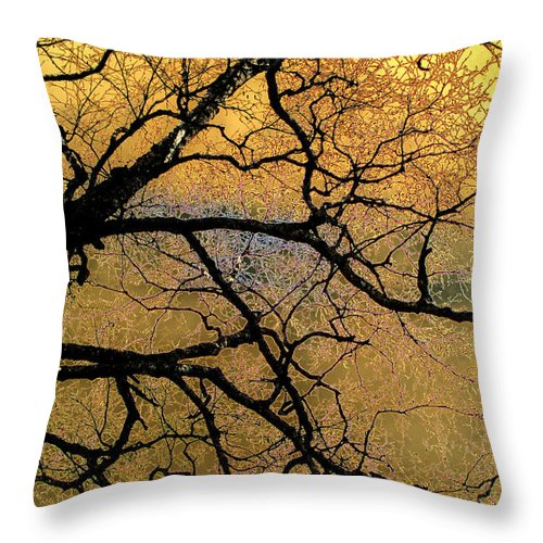 Scenic Throw Pillow featuring the photograph Tree Fantasy 7 by Lee Santa