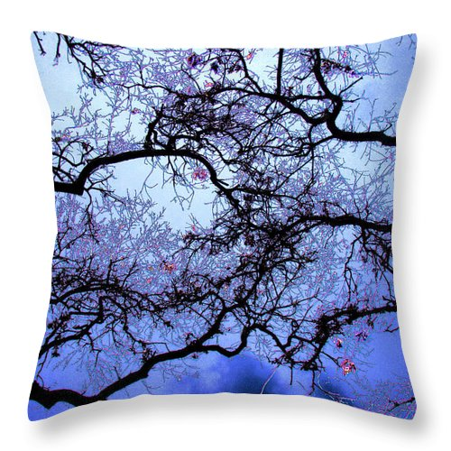 Scenic Throw Pillow featuring the photograph Tree Fantasy In Blue by Lee Santa