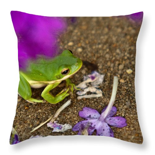 Green Throw Pillow featuring the photograph Tree Frog Under Flower by Douglas Barnett