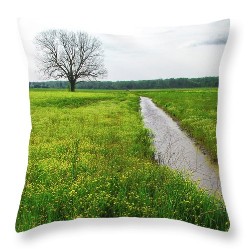 Tree Throw Pillow featuring the photograph Tree In Field 2 by Patricia Cale