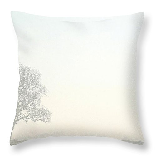 Tree Throw Pillow featuring the photograph Tree In Morning Fog by Steve Somerville