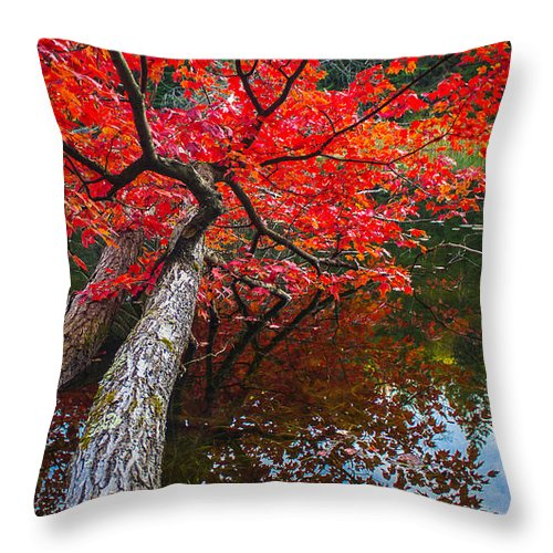 Maple Throw Pillow featuring the photograph Tree In The Pond by Tim Kirchoff