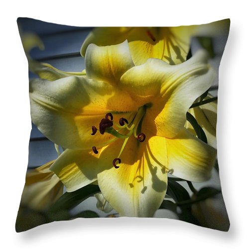 Nature Throw Pillow featuring the photograph Tree Lily by Patricia E Sundik