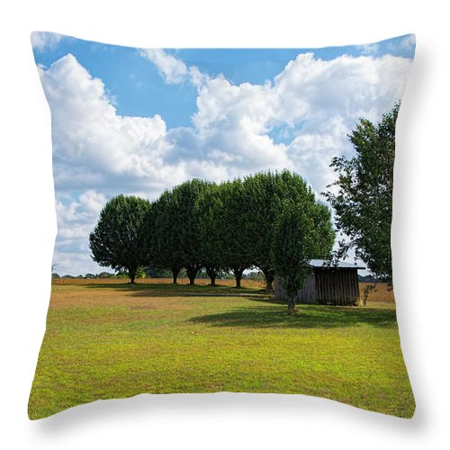 Tree Throw Pillow featuring the photograph Tree Line by Dennis Reagan