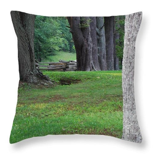 Trees Throw Pillow featuring the photograph Tree Line by Eric Liller