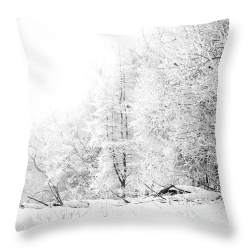 Frost Throw Pillow featuring the photograph Tree Line by Jessica Wakefield