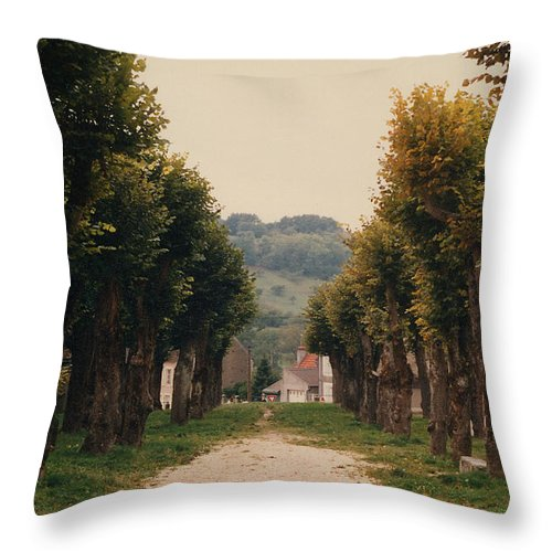 Trees Throw Pillow featuring the photograph Tree Lined Pathway In Lyon France by Nancy Mueller