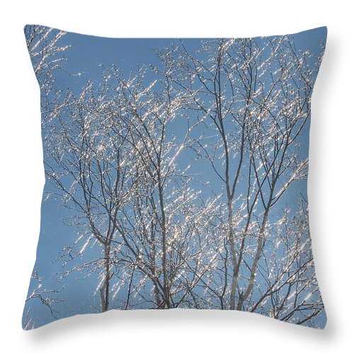 Tree Throw Pillow featuring the photograph Tree Of Diamonds - Photograph by Jackie Mueller-Jones