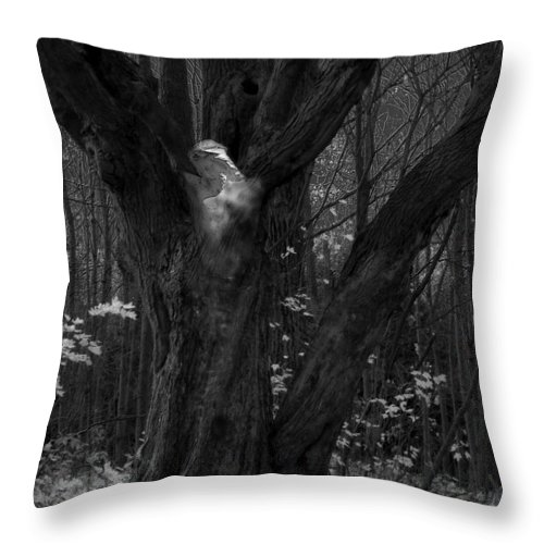 Tree Of Life Throw Pillow featuring the photograph Tree Of Life by Jacqueline Milner