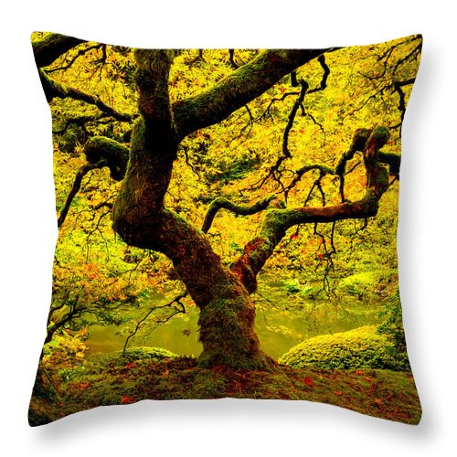 Throw Pillow featuring the photograph Tree Of Light Panel 2 by Ryan Smith