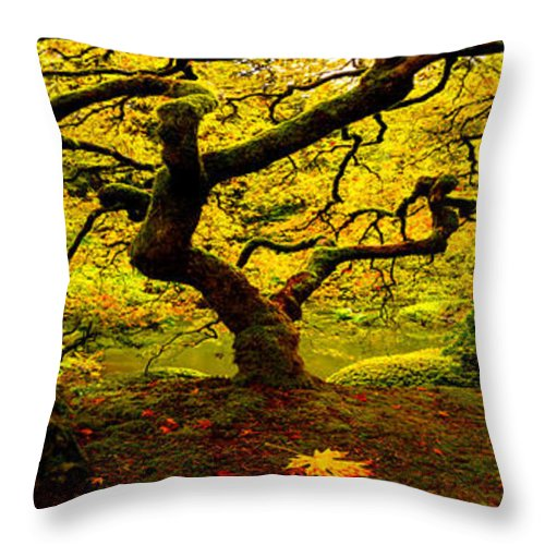 Tree Of Light Throw Pillow featuring the photograph Tree Of Light Pano by Ryan Smith