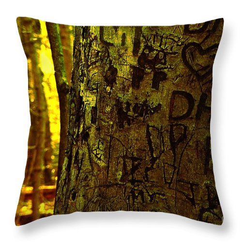 Initials Throw Pillow featuring the photograph Tree Of Love by Don Kenworthy