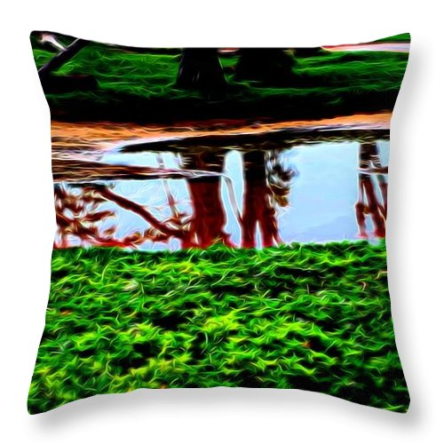 Tree Reflections Throw Pillow featuring the photograph Tree Reflections by Kristalin Davis