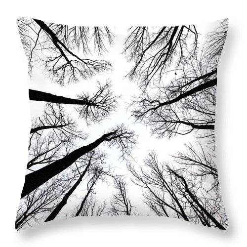 Trees Throw Pillow featuring the photograph Tree Tops by June Marie Sobrito
